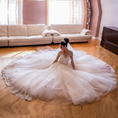 Tulle Lace V-Neck Wedding Dresses | Long Sleeves Classic Wedding Gowns with Appliques_4