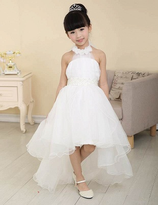 Lovely A-Line Organza Hi-Lo Halter Neck Sweep Train Flower Girl Dress_1