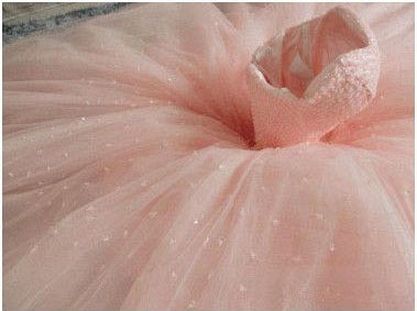 Gown Sleeveless Prom Chic Pink Dresses Ball Sweetheart  Princess Dresses_3